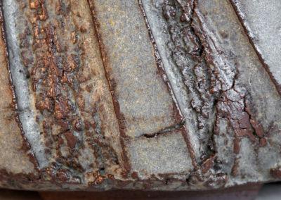 Pot_bonsai05_EGCc